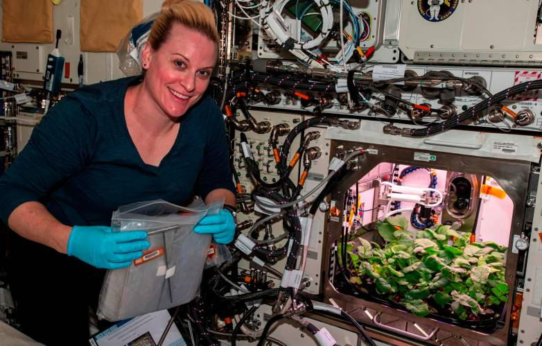 space veggies