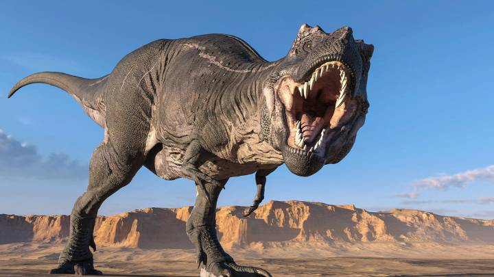 t rex population