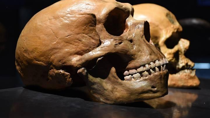 Nesher Ramla Homo Fossil