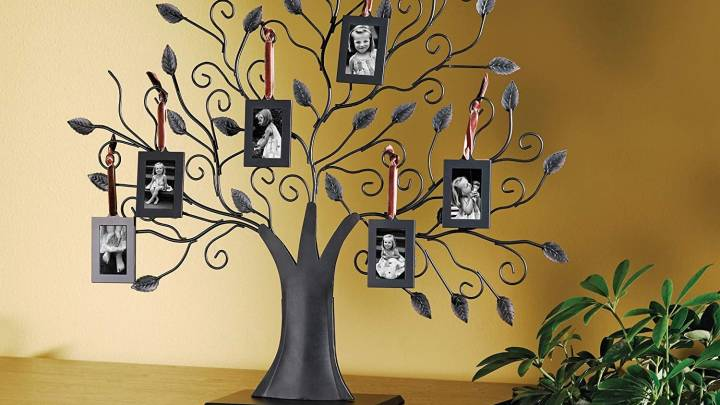 Best Family Tree Collage Set