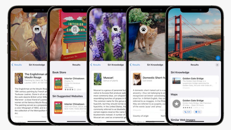 iOS 15 photos bug