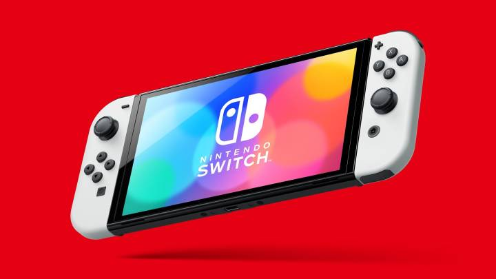 Nintendo Switch Battery Case