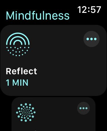 WatchOS 8 Mindfulness