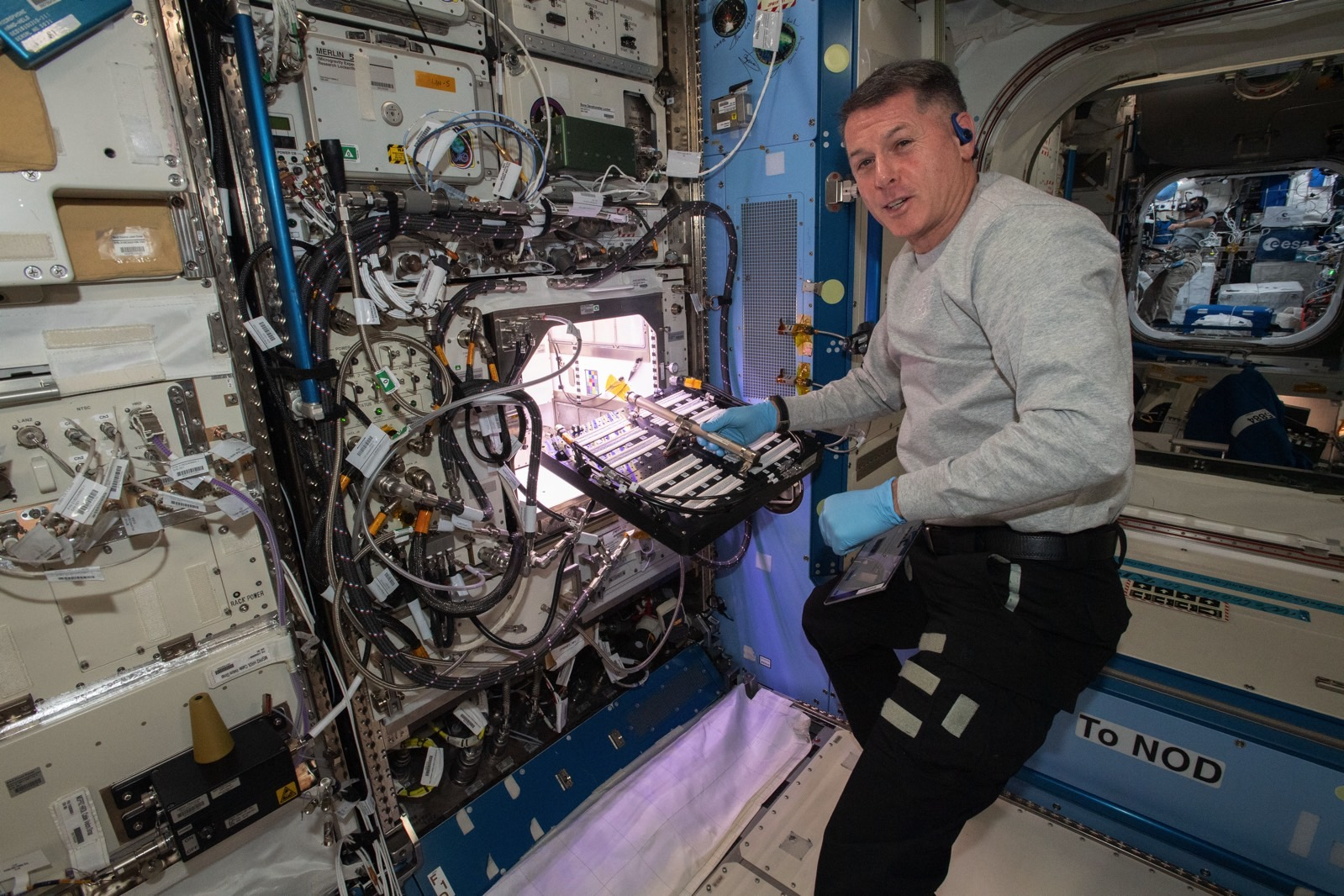 Astronot NASA menanam makanan pedas di luar angkasa