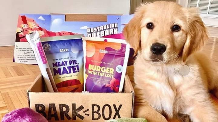 BarkBox monthly subscription