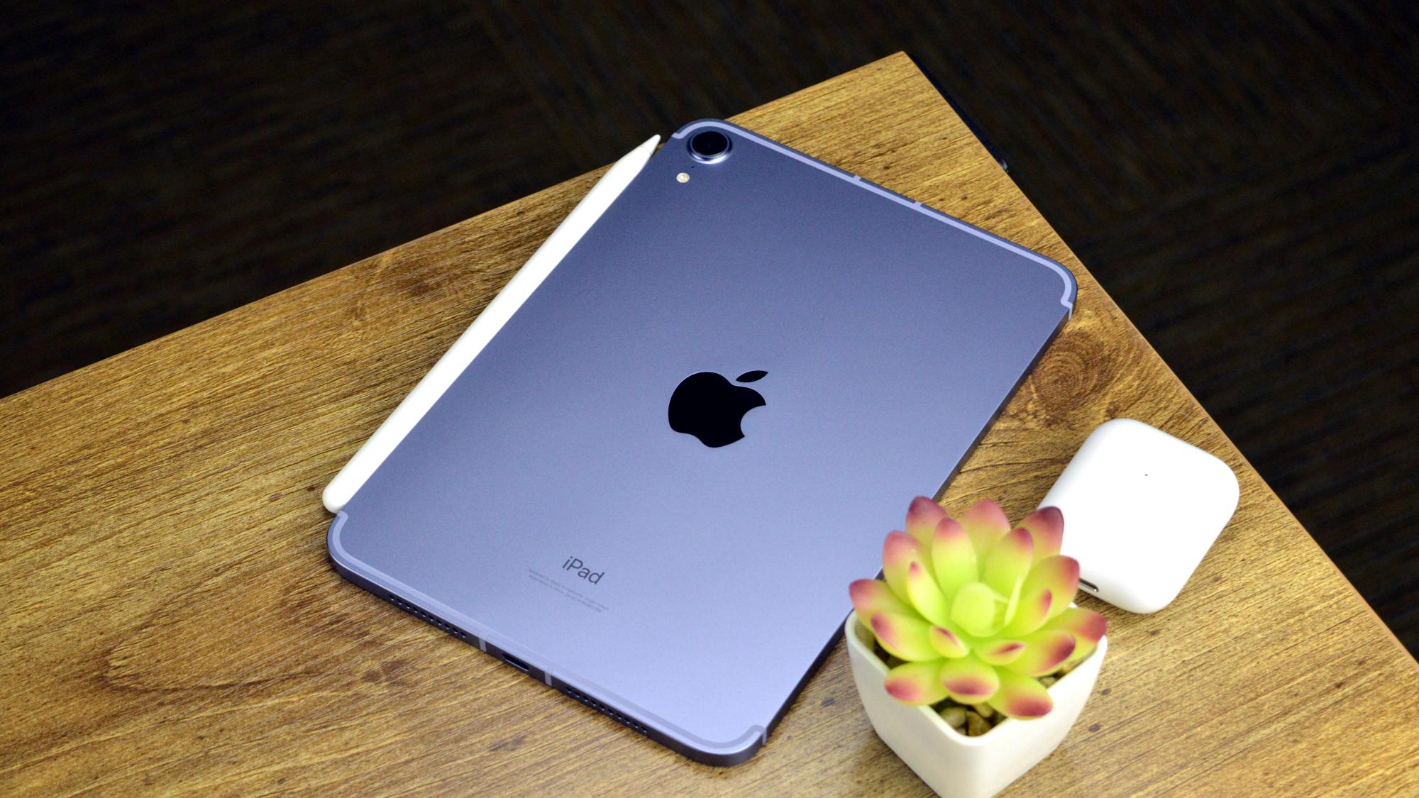 Apple iPad Mini 2021 Back